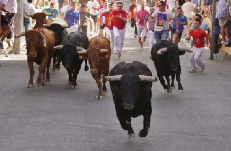 <span style='color:#780948'>ARCHIVED</span> - Two injured in first Moratalla bull run of the 2019 fiestas