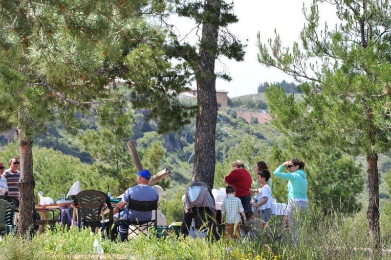 Enjoy a BBQ in the Sierra Espuna between October and May