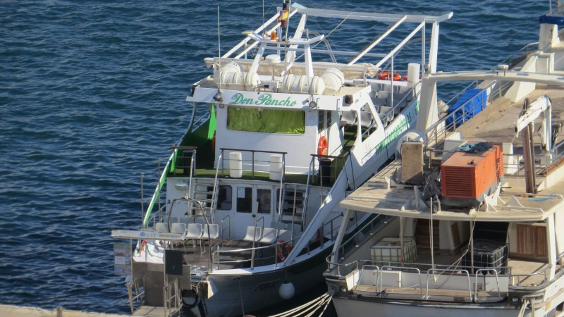 The Don Pancho tourist boat in Águilas; group outings, parties and boat trips