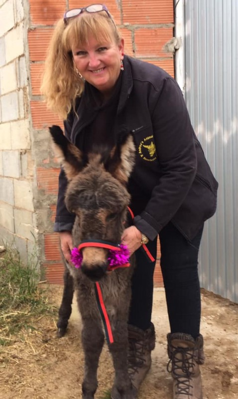 <span style='color:#780948'>ARCHIVED</span> - URGENT APPEAL  from Andreas Animal Rescue as coronacrisis deepens