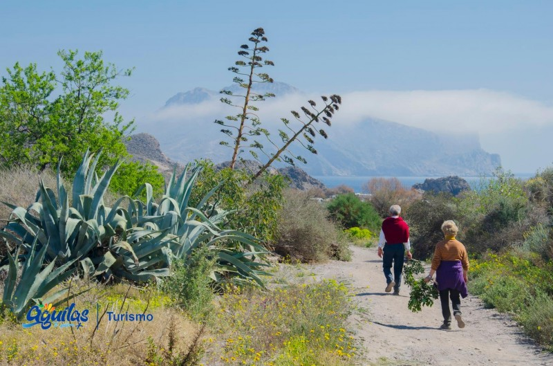 Free guided tours of Aguilas during September
