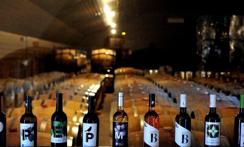 How to book and navigate the Jumilla Wine Route (Ruta del Vino)